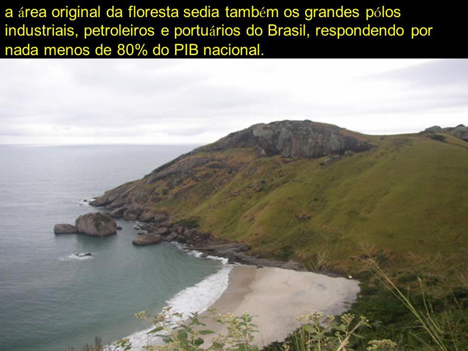 a área original da floresta sedia também os grandes pólos industriais, petroleiros e portuários do Brasil, respondendo por nada menos de 80% do PIB nacional.
