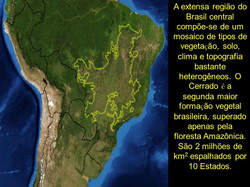 A extensa região do Brasil central compõe-se de um mosaico de tipos de vegetação, solo, clima e topografia bastante heterogêneos.