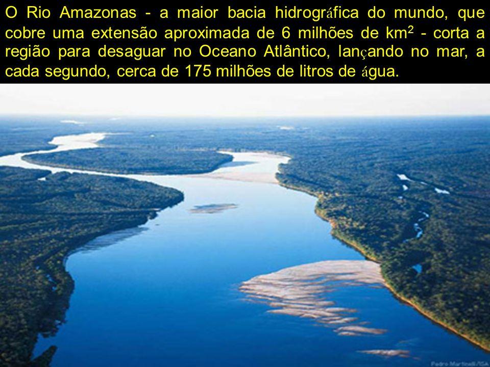 O Rio Amazonas - a maior bacia hidrográfica do mundo, que cobre uma extensão aproximada de 6 milhões de km2 - corta a região para desaguar no Oceano Atlântico, lançando no mar, a cada segundo, cerca de 175 milhões de litros de água.