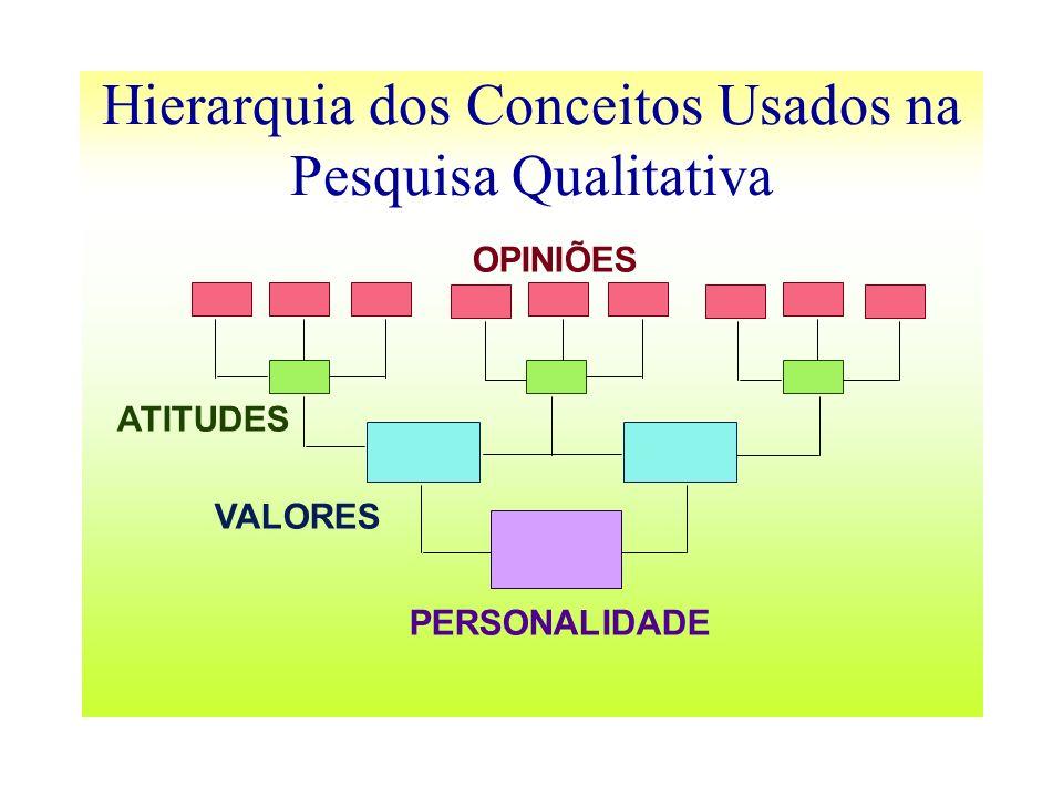 Hierarquia dos Conceitos Usados na Pesquisa Qualitativa