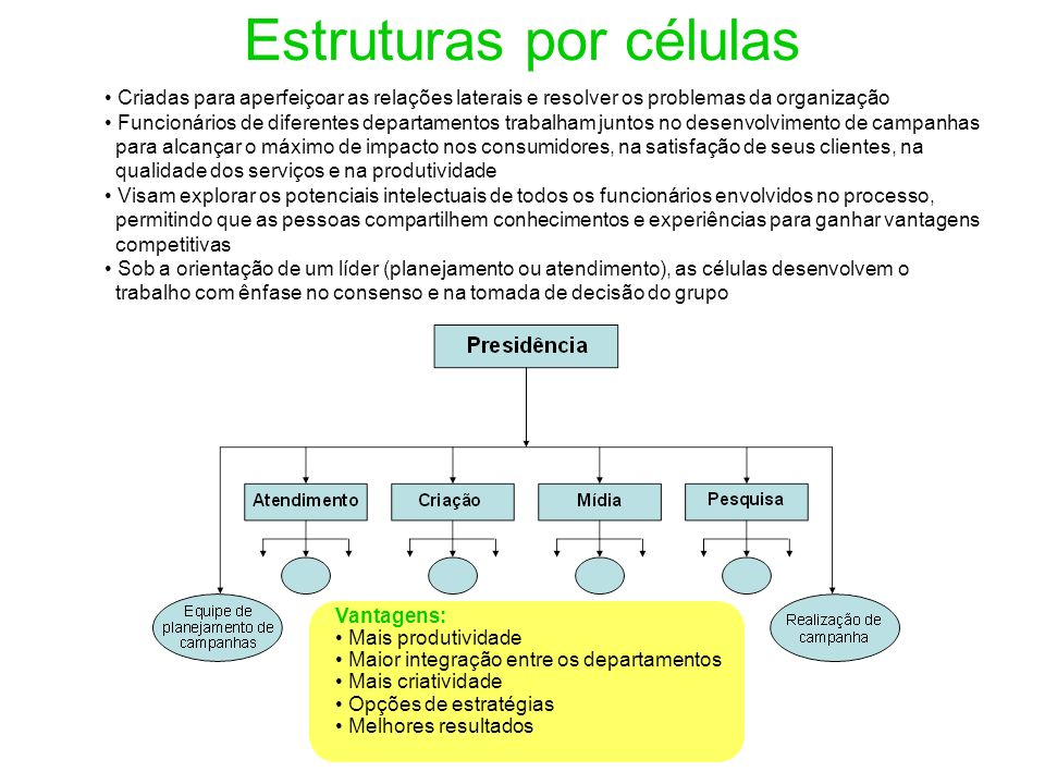 Estruturas por células