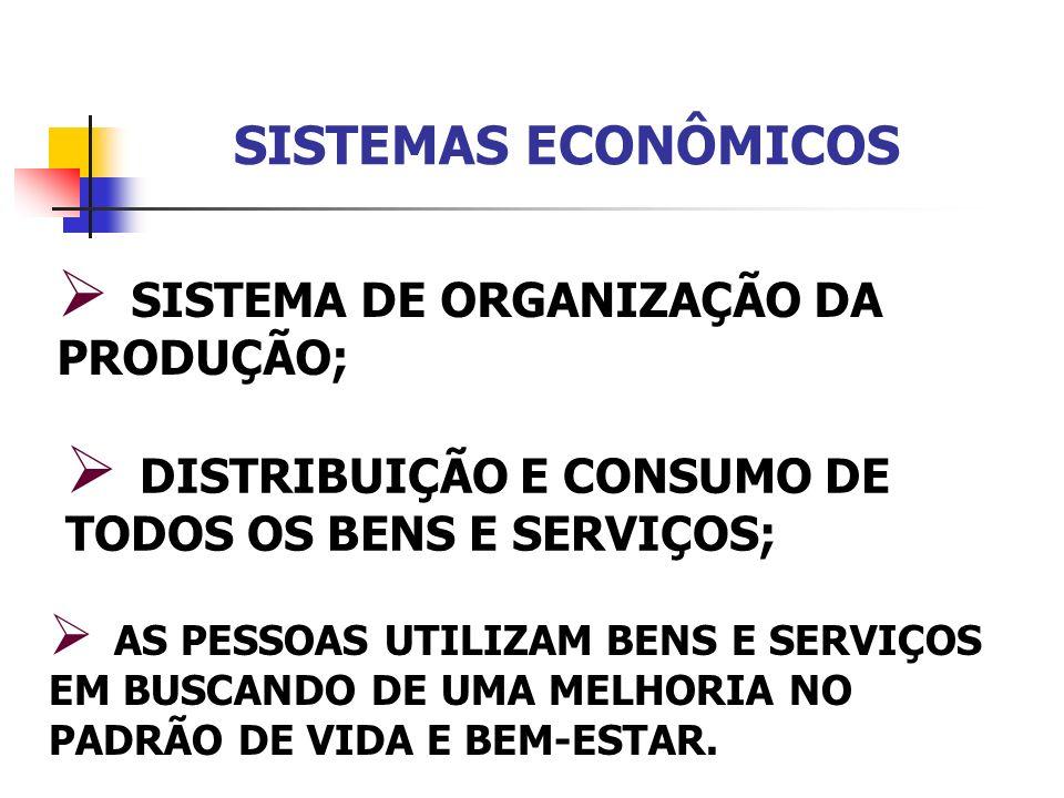 SISTEMAS ECONÔMICOS SISTEMA DE ORGANIZAÇÃO DA PRODUÇÃO;