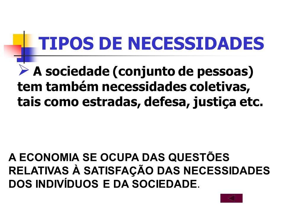 TIPOS DE NECESSIDADES A sociedade (conjunto de pessoas) tem também necessidades coletivas, tais como estradas, defesa, justiça etc.