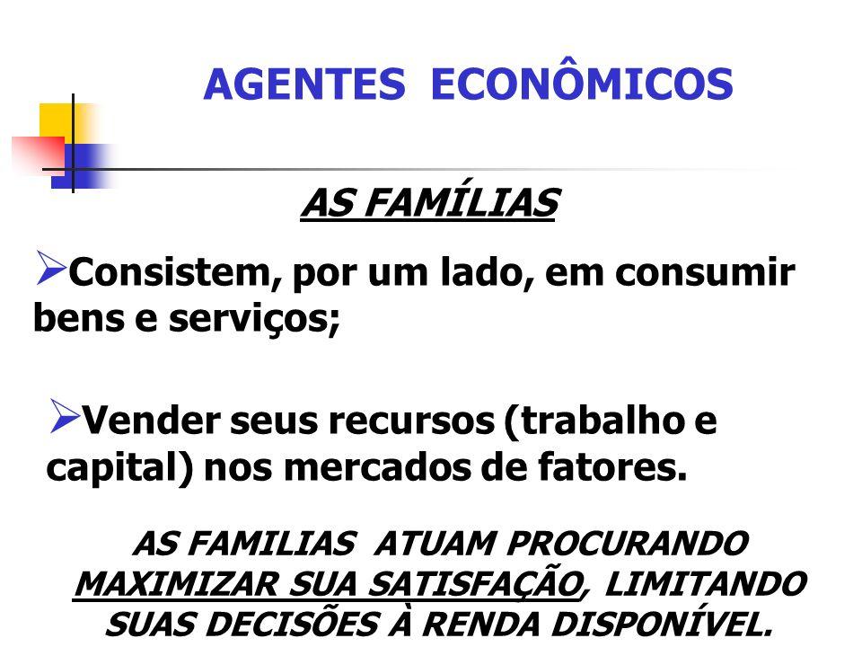 AGENTES ECONÔMICOS AS FAMÍLIAS