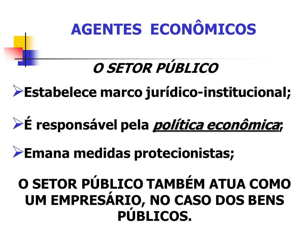 AGENTES ECONÔMICOS O SETOR PÚBLICO