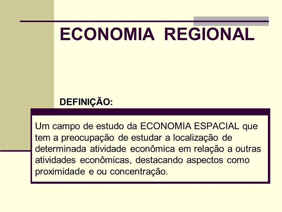 ECONOMIA REGIONAL DEFINIÇÃO: