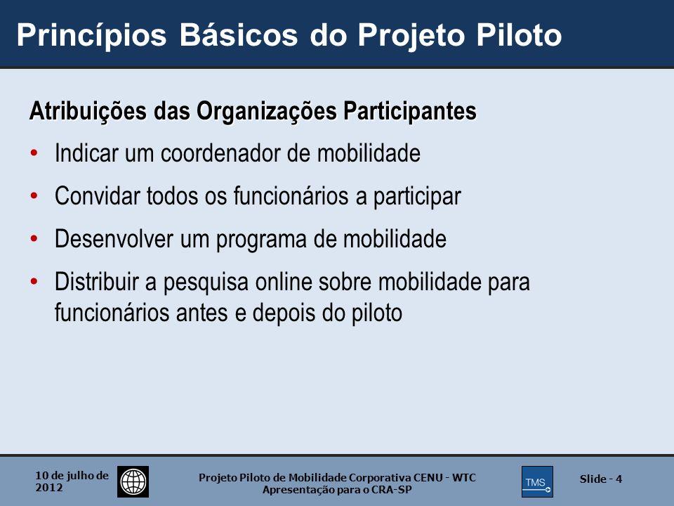 Princípios Básicos do Projeto Piloto
