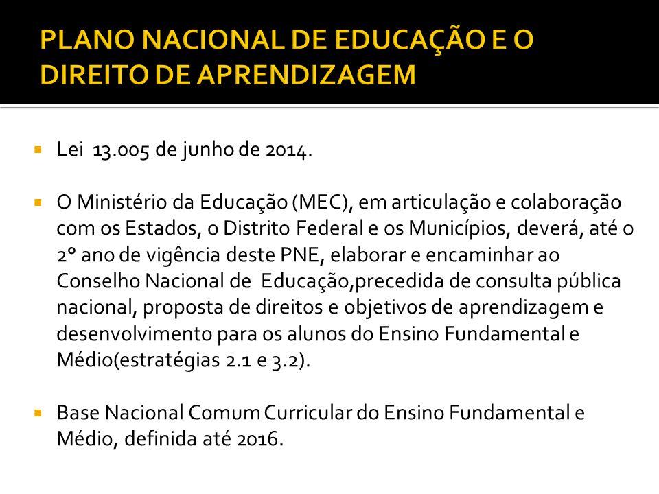 PLANO NACIONAL DE EDUCAÇÃO E O DIREITO DE APRENDIZAGEM