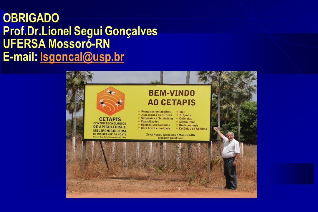 OBRIGADO Prof.Dr.Lionel Segui Gonçalves UFERSA Mossoró-RN E-mail: lsgoncal@usp.br
