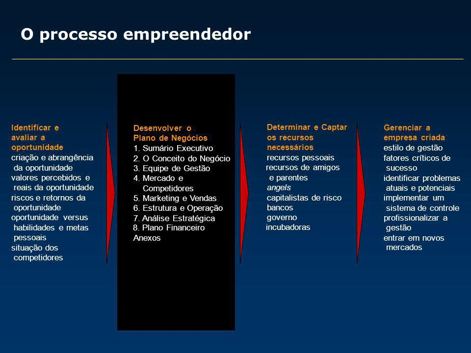 O processo empreendedor