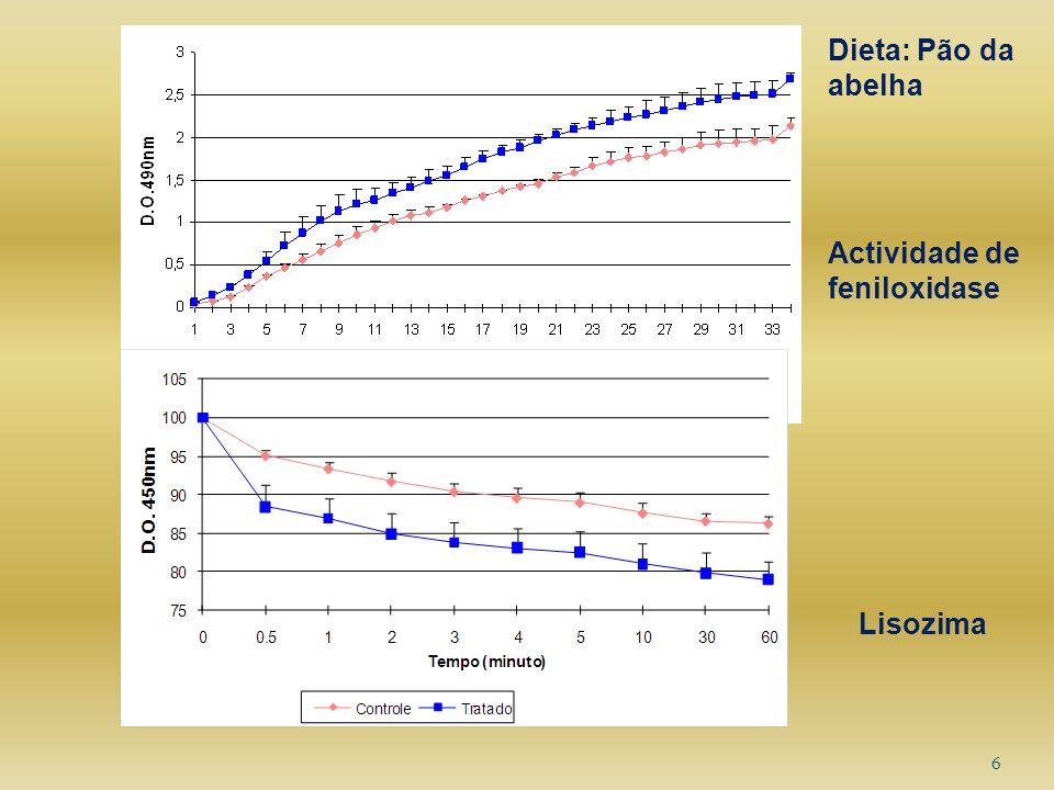 Dieta: Pão da abelha Actividade de feniloxidase Lisozima