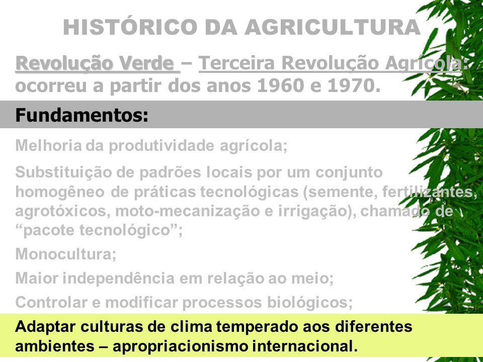 HISTÓRICO DA AGRICULTURA