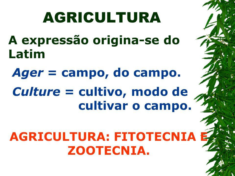 AGRICULTURA: FITOTECNIA E ZOOTECNIA.