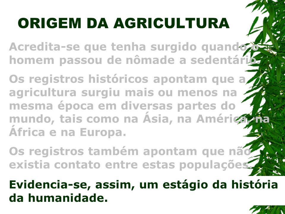 ORIGEM DA AGRICULTURA Acredita-se que tenha surgido quando o homem passou de nômade a sedentário.