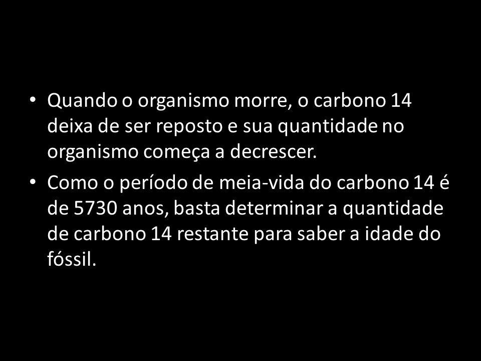 Quando o organismo morre, o carbono 14 deixa de ser reposto e sua quantidade no organismo começa a decrescer.