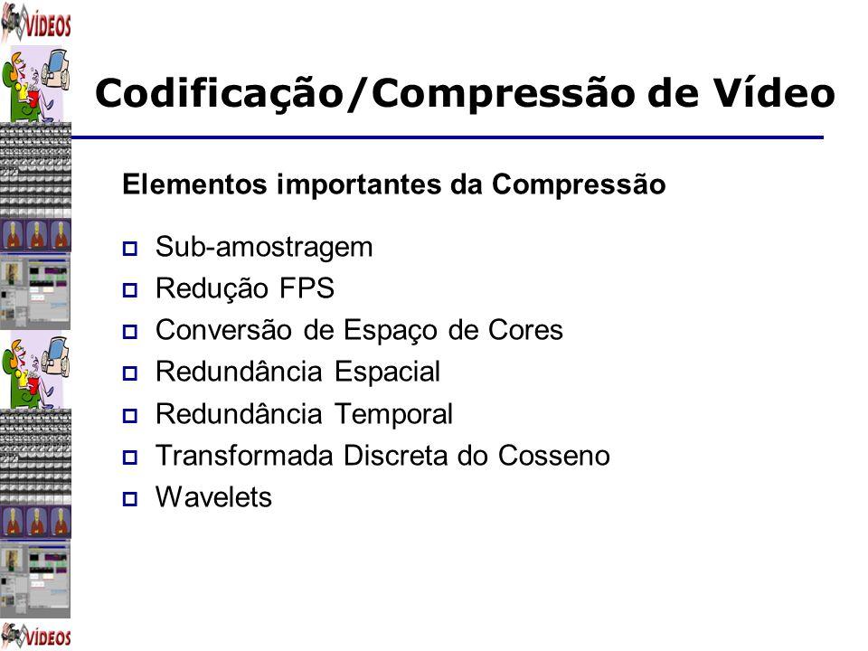 Elementos importantes da Compressão
