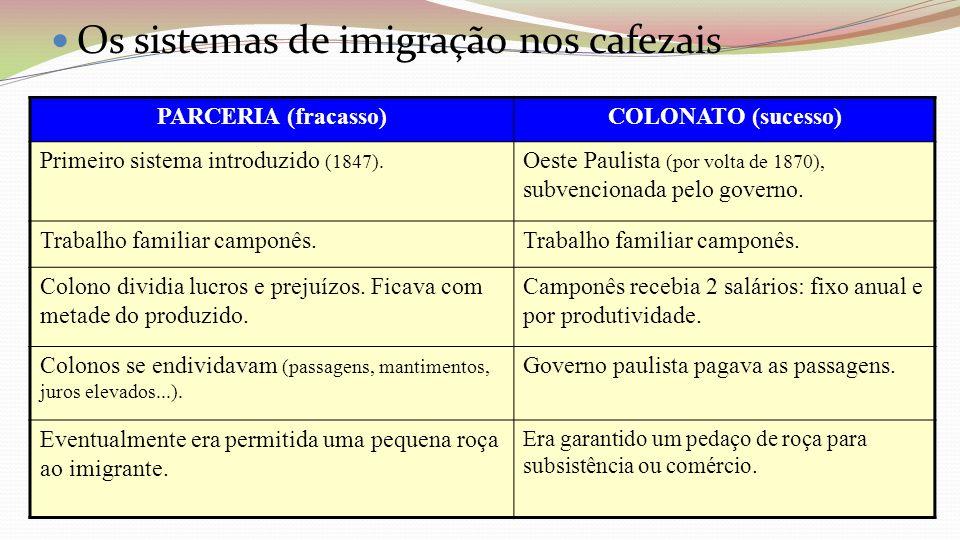 Os sistemas de imigração nos cafezais
