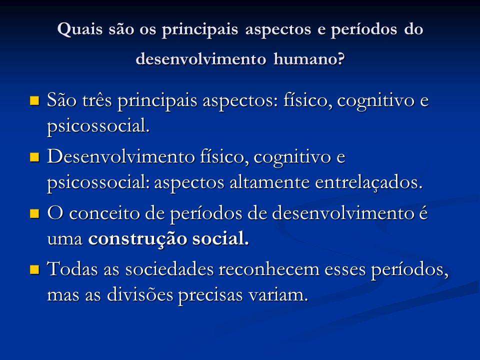 Quais são os principais aspectos e períodos do desenvolvimento humano
