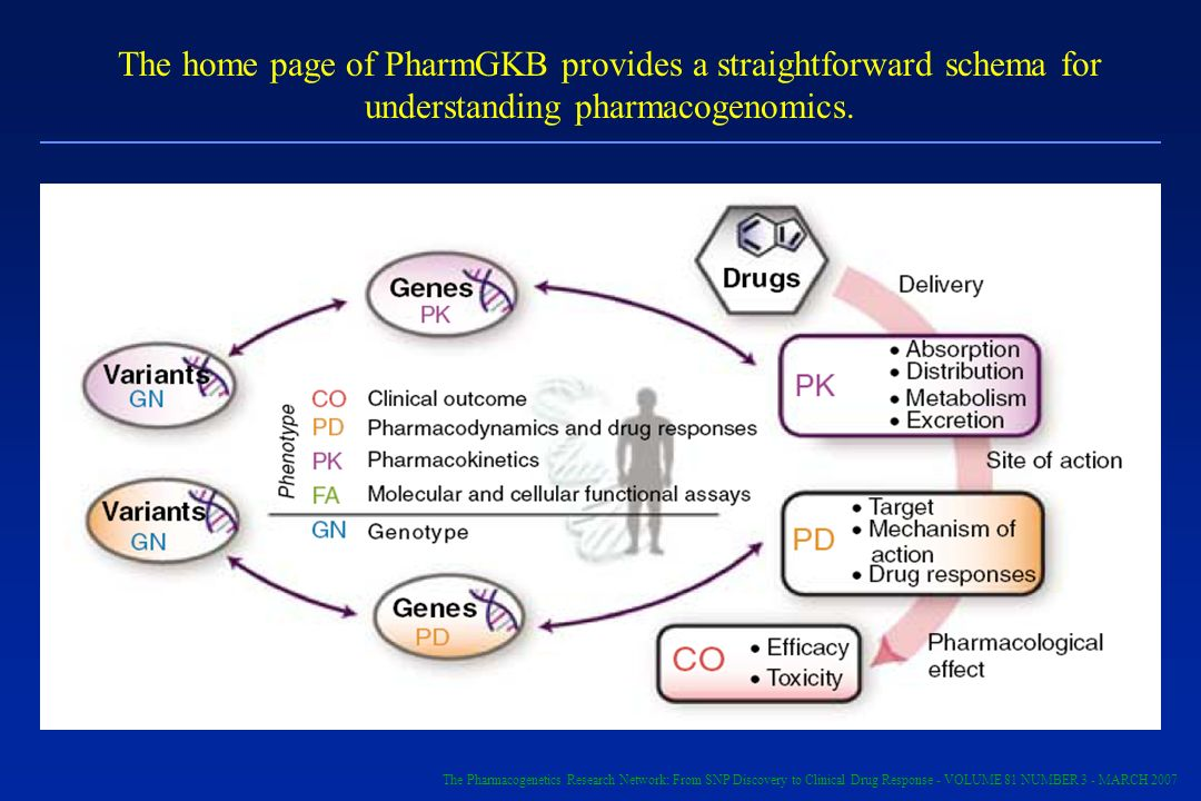 The home page of PharmGKB provides a straightforward schema for understanding pharmacogenomics.