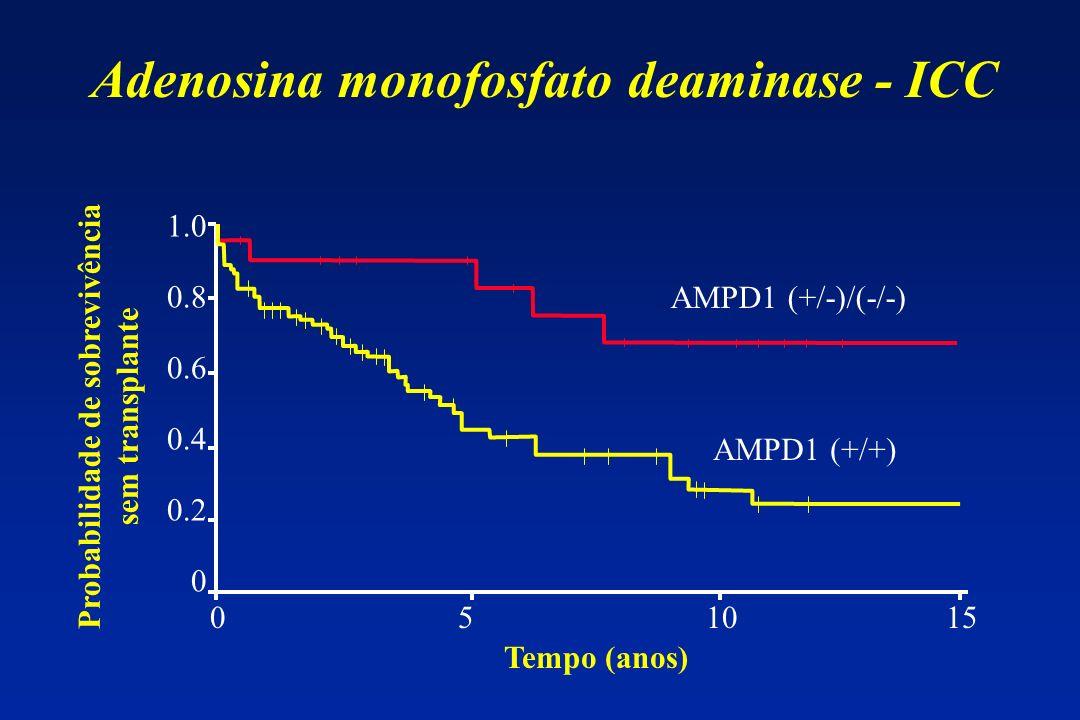 Adenosina monofosfato deaminase - ICC