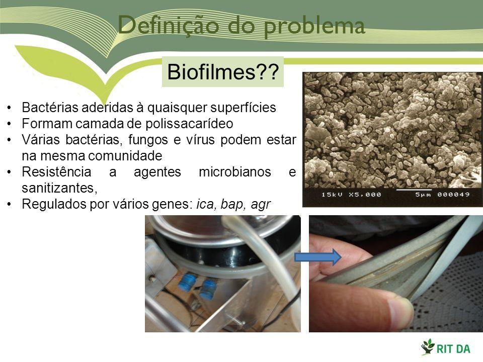 Definição do problema Biofilmes