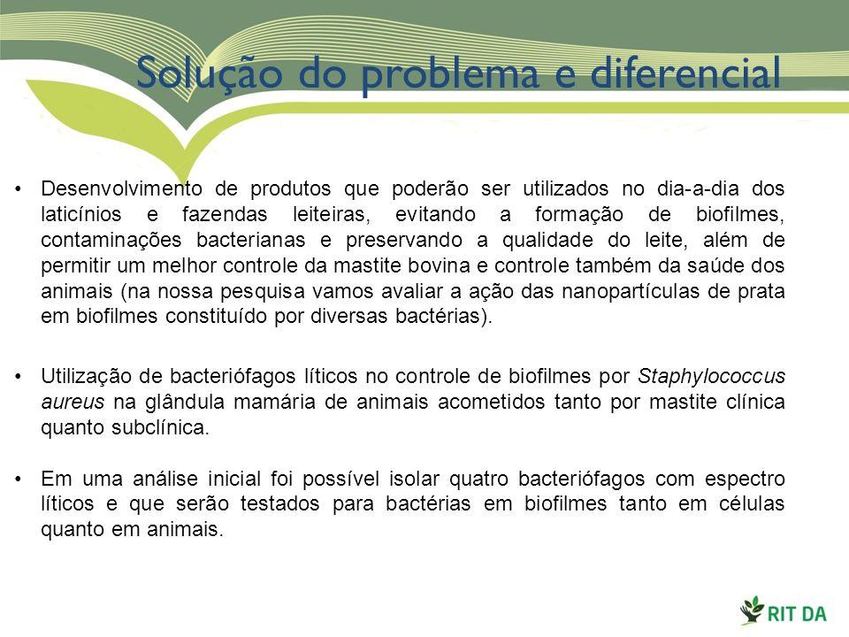 Solução do problema e diferencial