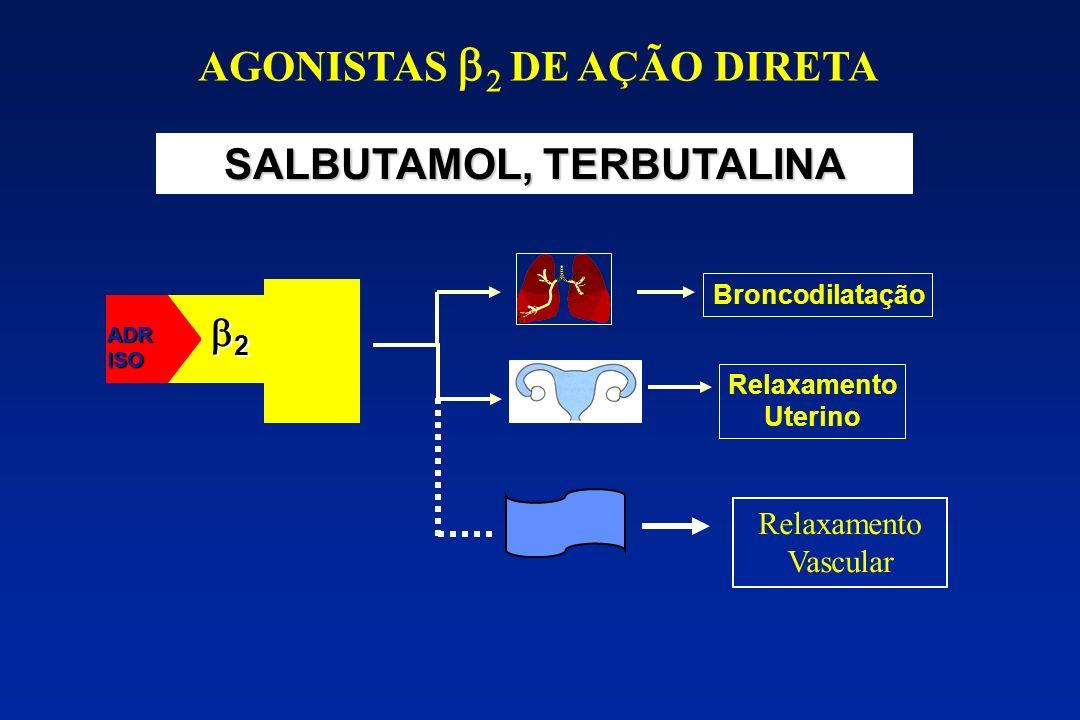 AGONISTAS b2 DE AÇÃO DIRETA SALBUTAMOL, TERBUTALINA