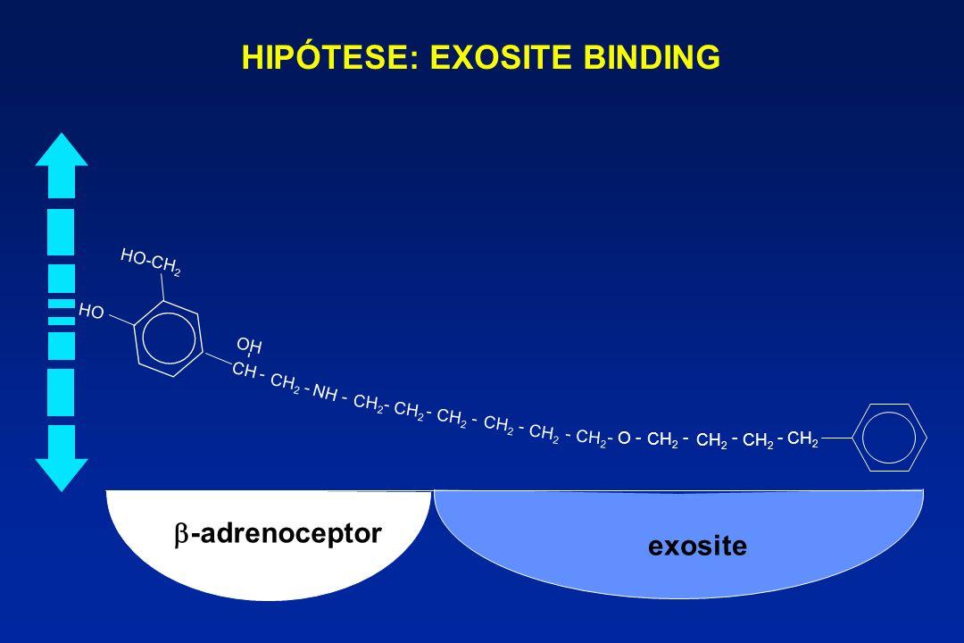 HIPÓTESE: EXOSITE BINDING