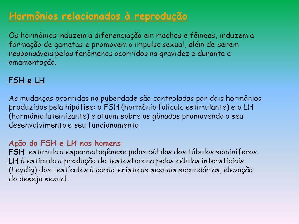 Hormônios relacionados à reprodução