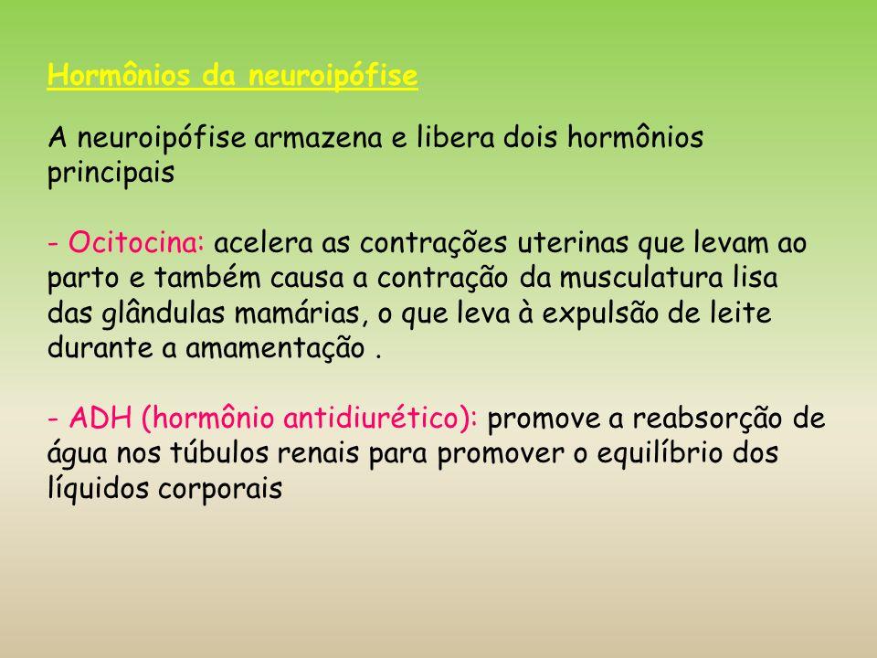 Hormônios da neuroipófise