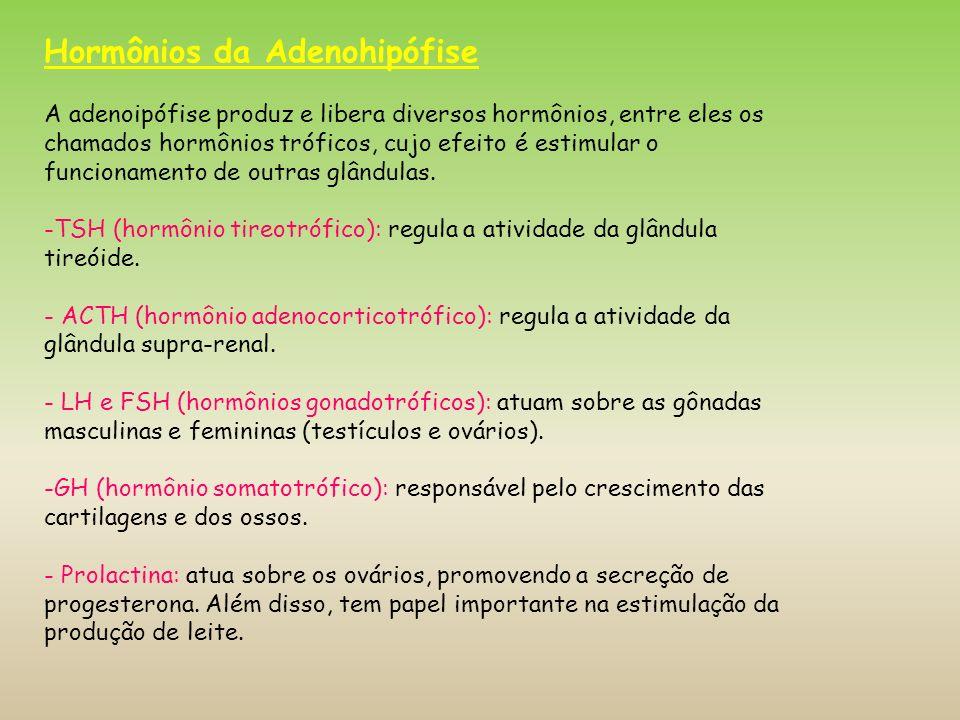 Hormônios da Adenohipófise