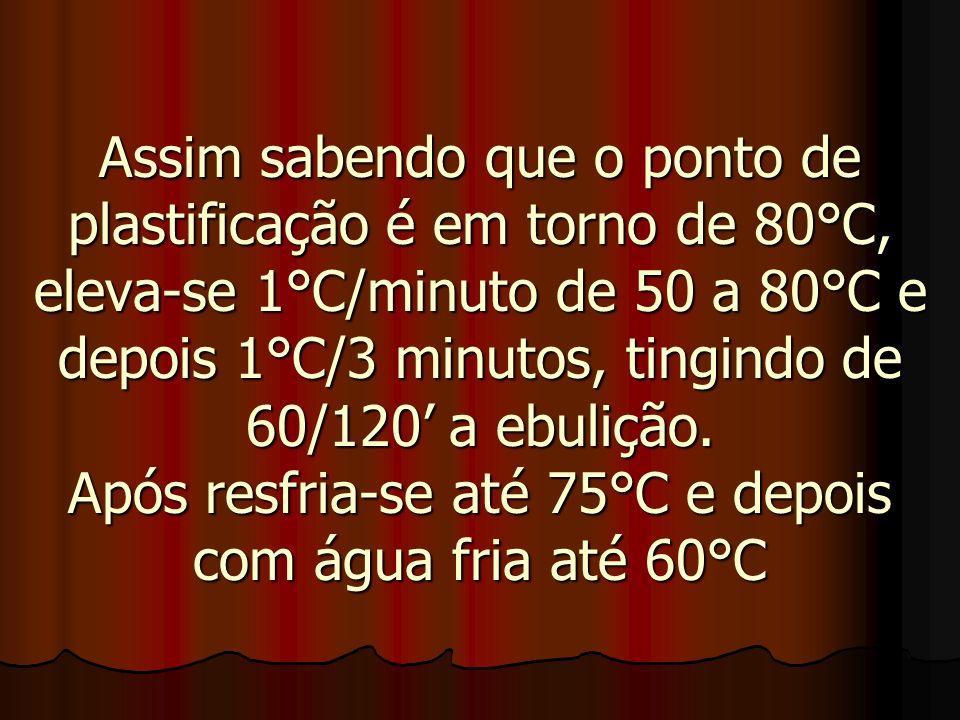 Assim sabendo que o ponto de plastificação é em torno de 80°C, eleva-se 1°C/minuto de 50 a 80°C e depois 1°C/3 minutos, tingindo de 60/120' a ebulição.