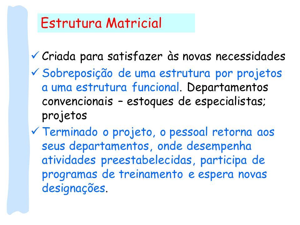 Estrutura Matricial Criada para satisfazer às novas necessidades