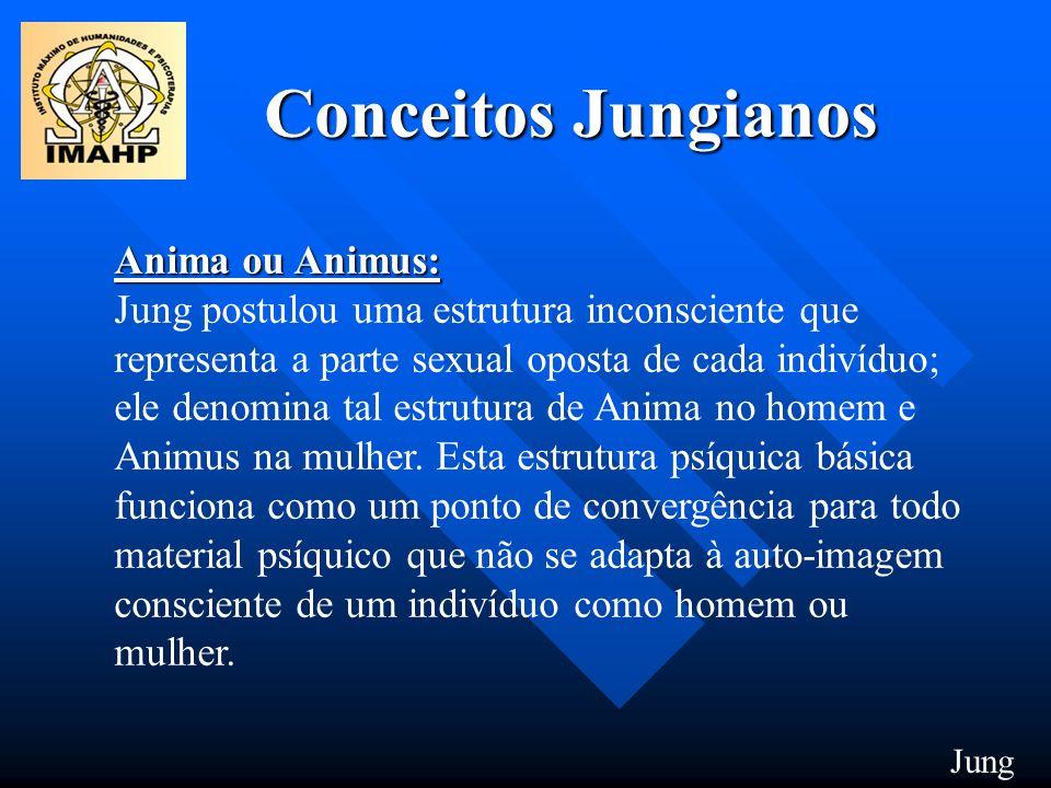 Conceitos Jungianos