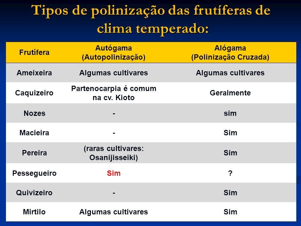 Tipos de polinização das frutíferas de clima temperado: