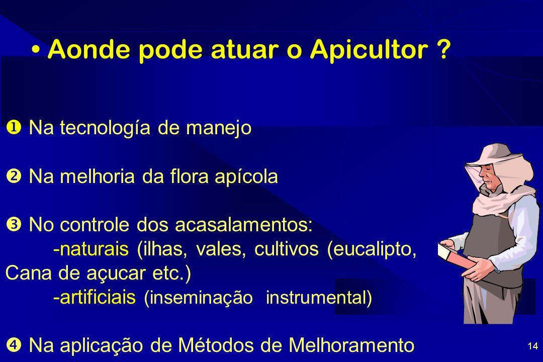 Aonde pode atuar o Apicultor