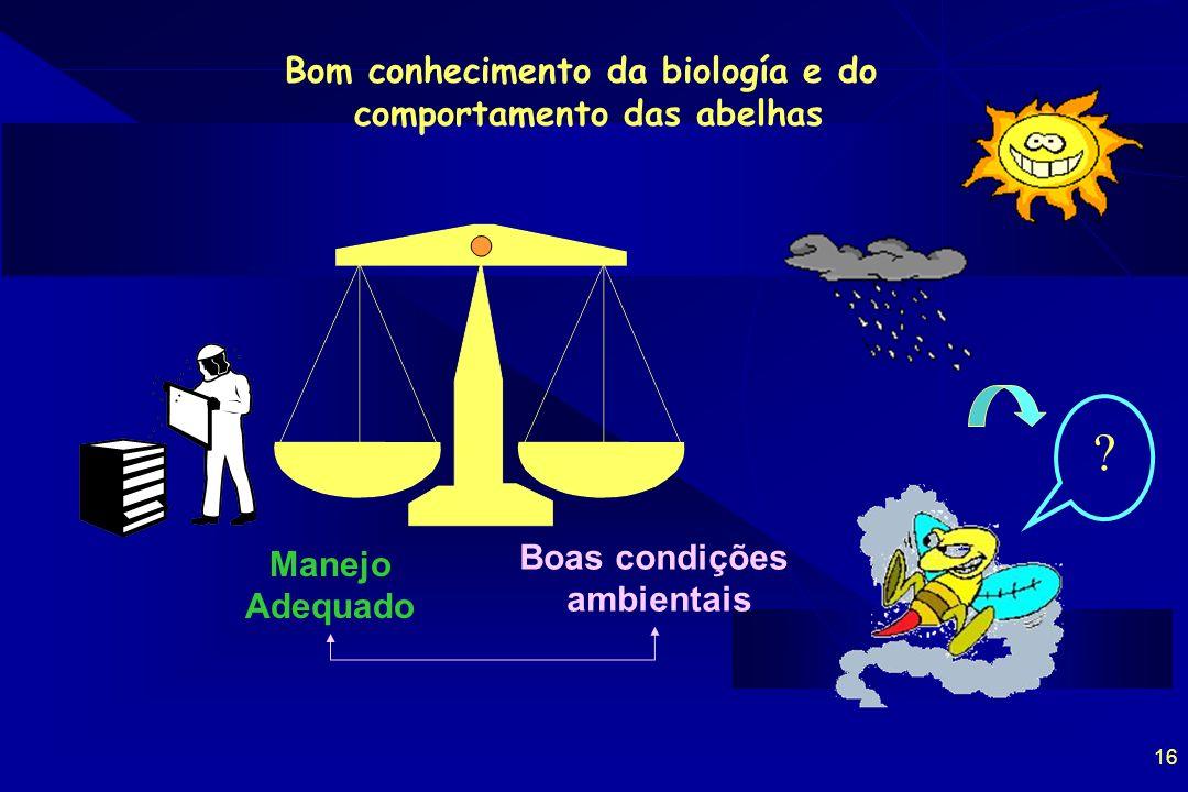 Bom conhecimento da biología e do comportamento das abelhas