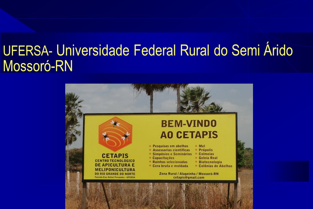 UFERSA- Universidade Federal Rural do Semi Árido Mossoró-RN