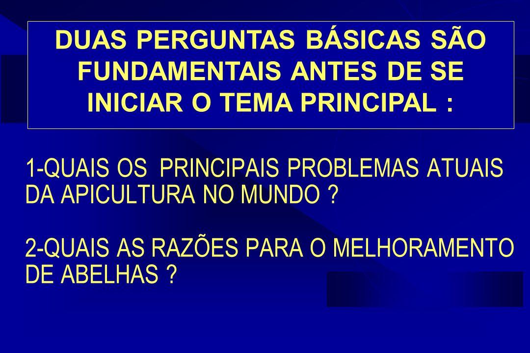DUAS PERGUNTAS BÁSICAS SÃO FUNDAMENTAIS ANTES DE SE INICIAR O TEMA PRINCIPAL :