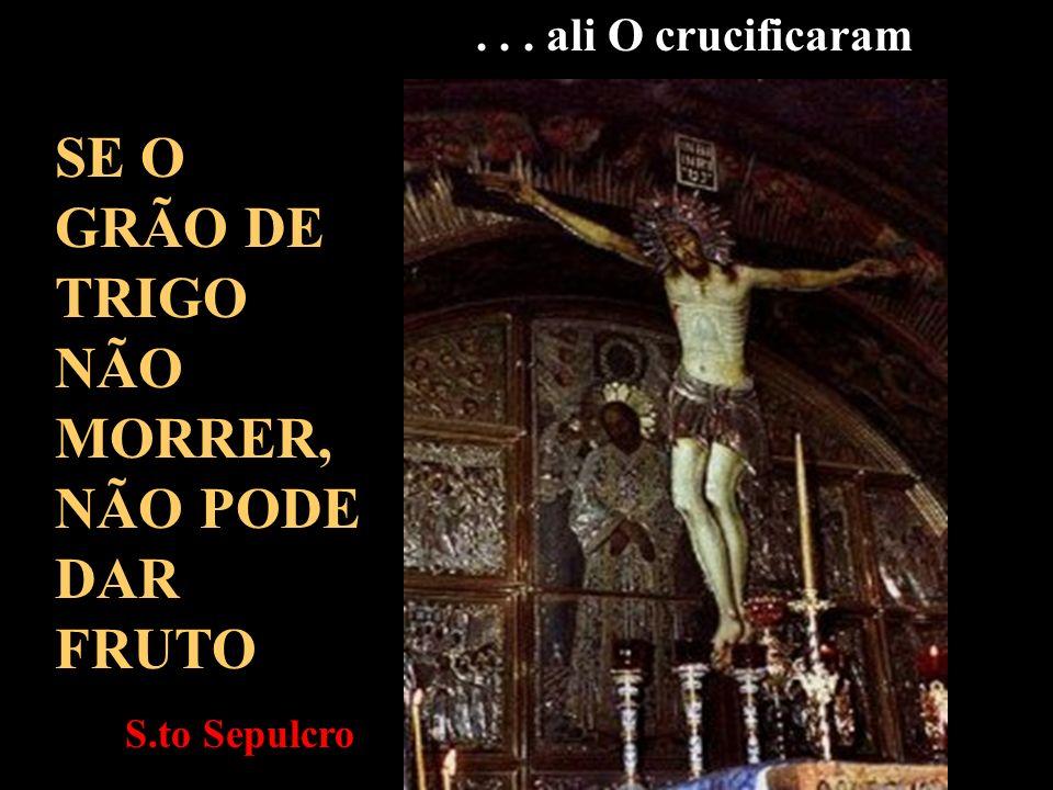SE O GRÃO DE TRIGO NÃO MORRER, NÃO PODE DAR FRUTO