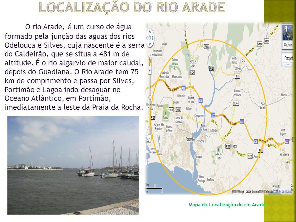 Localização do rio arade