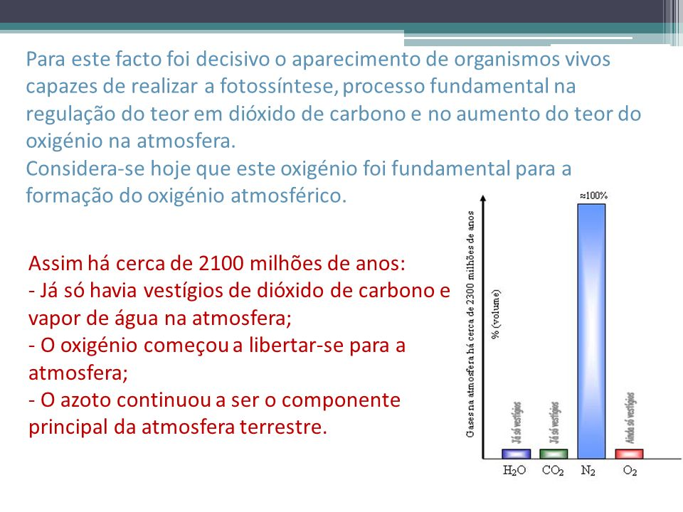 Para este facto foi decisivo o aparecimento de organismos vivos capazes de realizar a fotossíntese, processo fundamental na regulação do teor em dióxido de carbono e no aumento do teor do oxigénio na atmosfera.
