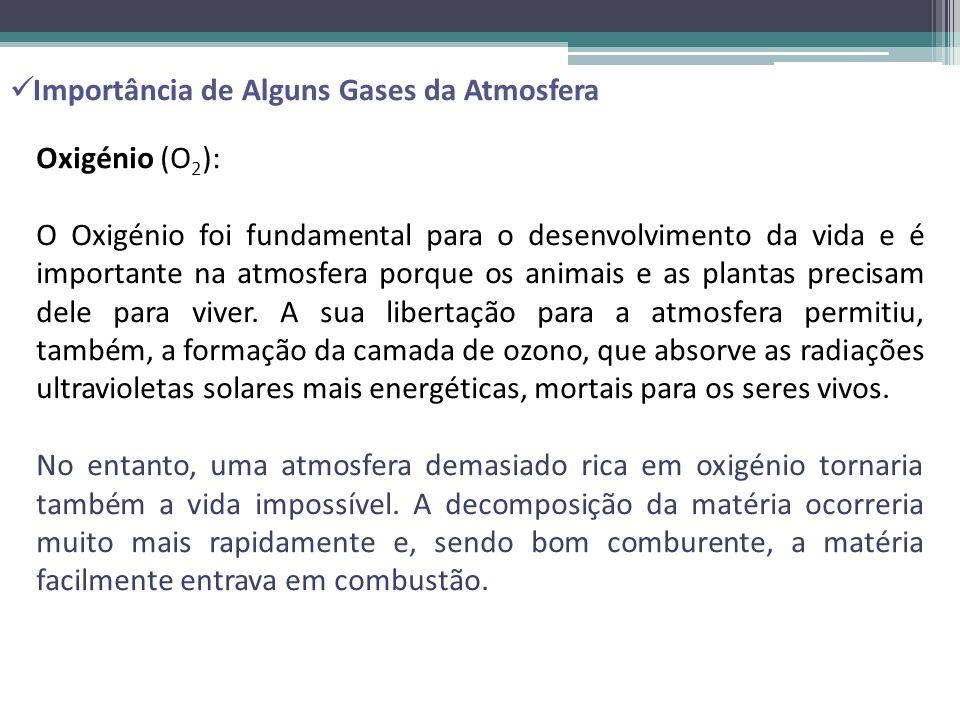 Importância de Alguns Gases da Atmosfera