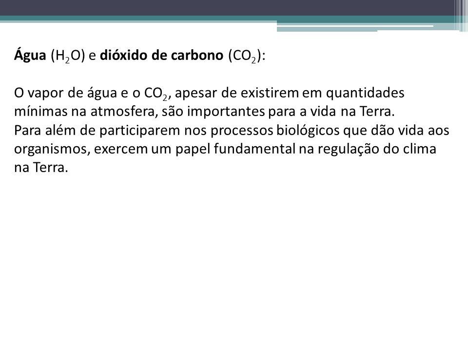 Água (H2O) e dióxido de carbono (CO2):