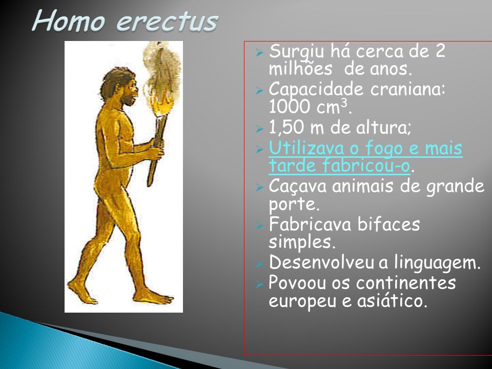 Homo erectus Surgiu há cerca de 2 milhões de anos.