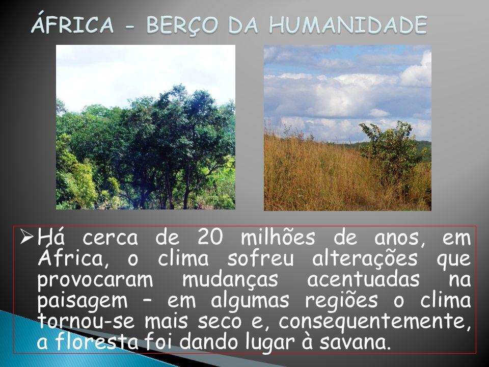 ÁFRICA - BERÇO DA HUMANIDADE