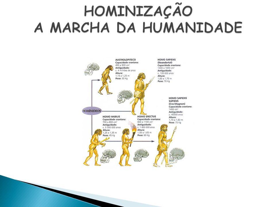 HOMINIZAÇÃO A MARCHA DA HUMANIDADE