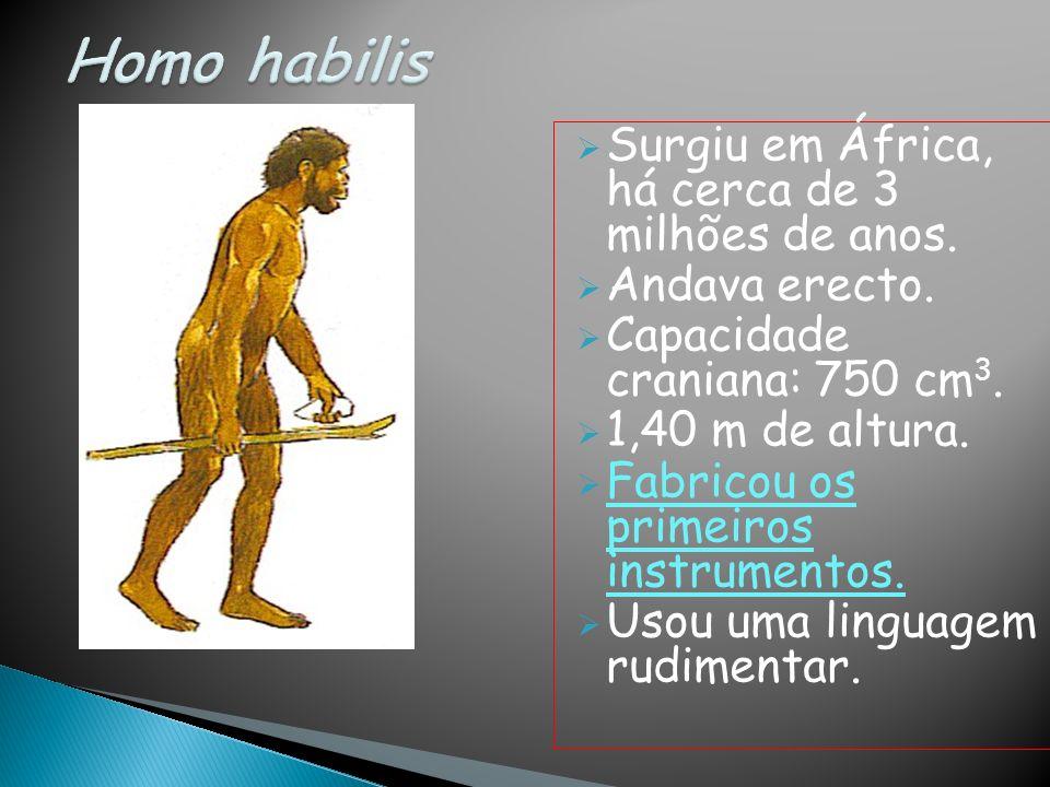 Homo habilis Surgiu em África, há cerca de 3 milhões de anos.