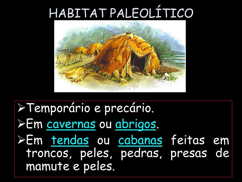 HABITAT PALEOLÍTICO Temporário e precário. Em cavernas ou abrigos.