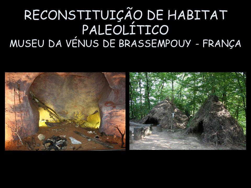RECONSTITUIÇÃO DE HABITAT PALEOLÍTICO MUSEU DA VÉNUS DE BRASSEMPOUY - FRANÇA